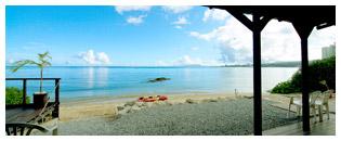 ショップの目の前が自然豊かで、とっても綺麗なビーチ!