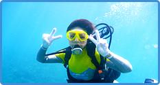 (B)青の洞窟探検と大サンゴ礁シュノーケル+体験ダイビング